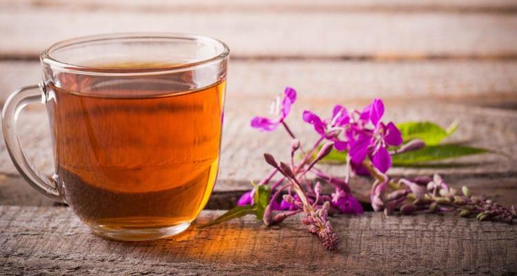 Чем полезен иван-чай