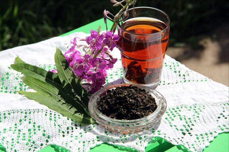 Противопоказания для иван-чая