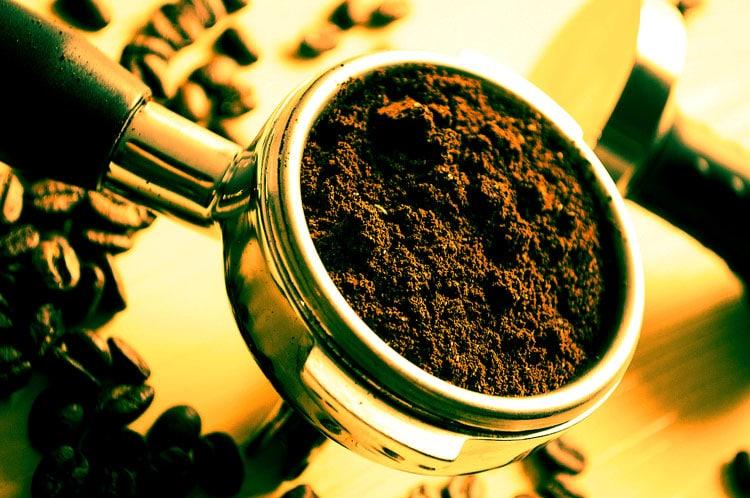 Кофеин в цикории