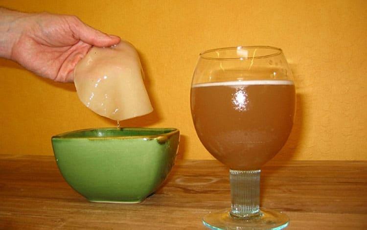 Противопоказания к приему чайного гриба