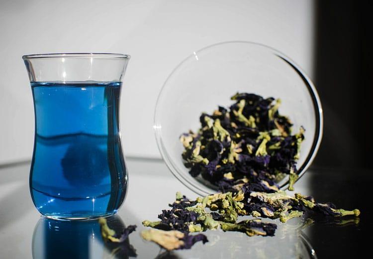 Противопоказания к применению пурпурного чая