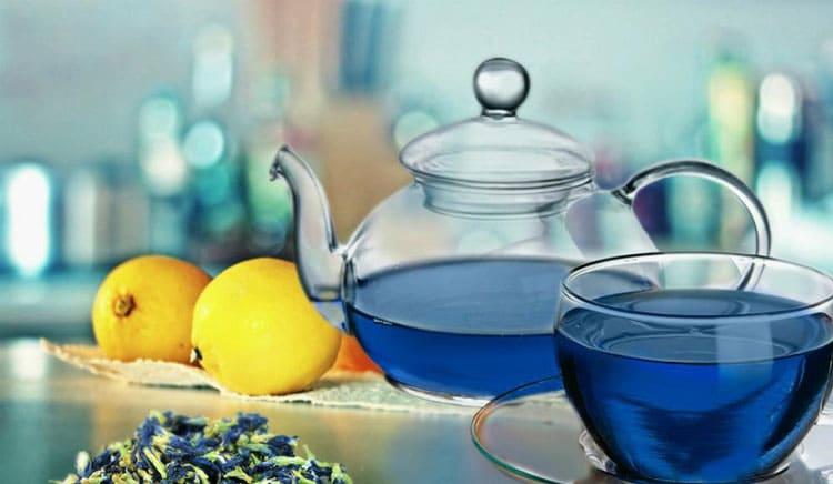 Противопоказания для приема синего чая