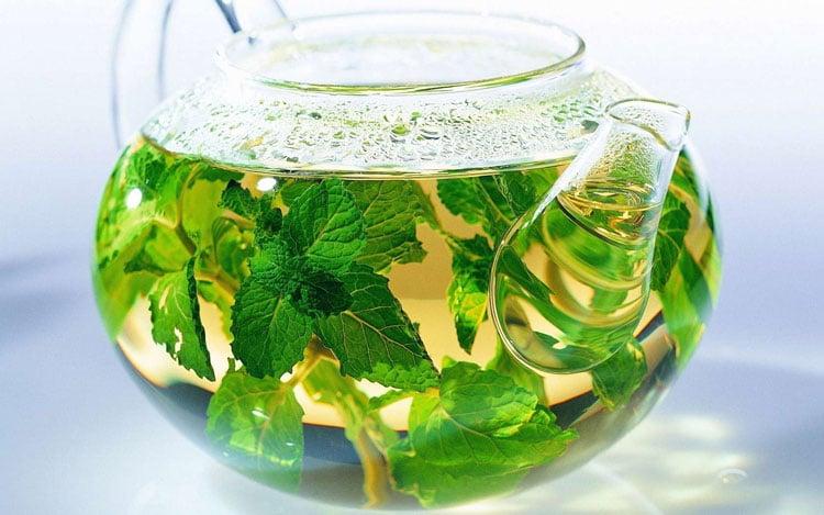 Польза горячего зеленого чая