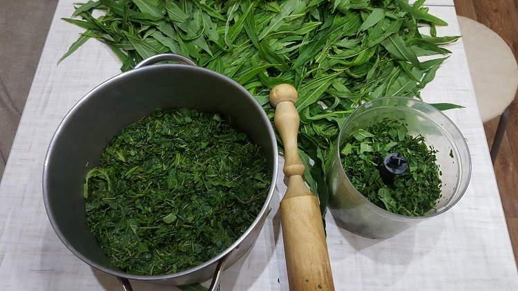 Заготовка иван-чая
