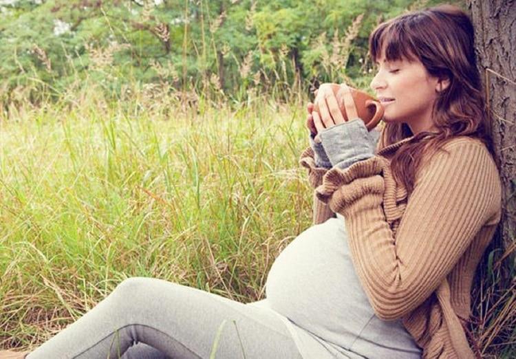 Прием иван чая во время беременности