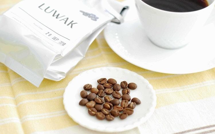 Чашка кофе копи лювак