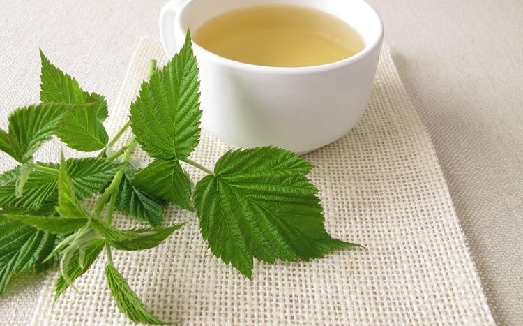Чай с листом малины